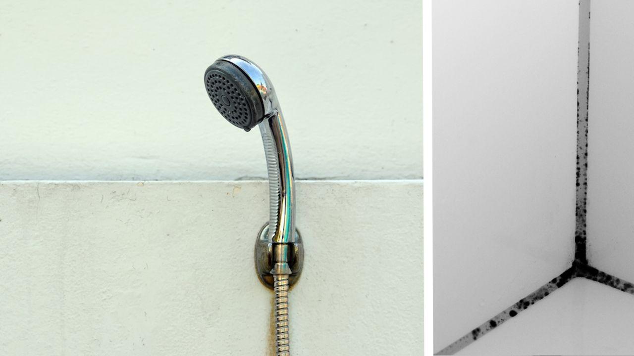 Duschkabine reinigen mit diesen Tipps klappt's