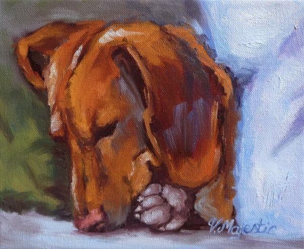 Miniature Dachshund Dog Doxin Canvas Print Canvas Art By