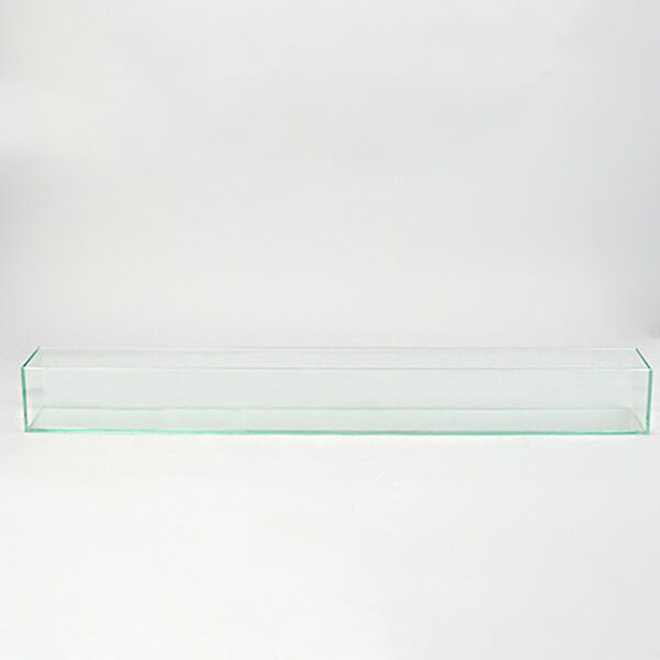 Rectangle Floor Glass P*T Planter In 2020 With Images 400 x 300