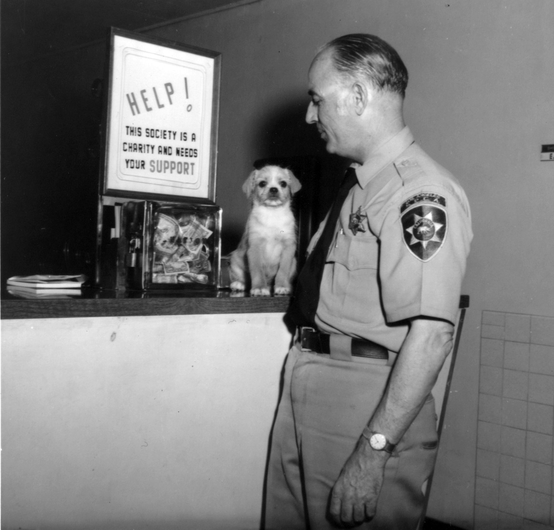 Spcala Humane Officer From The Fifties Vet Tech Animal Shelter Vets