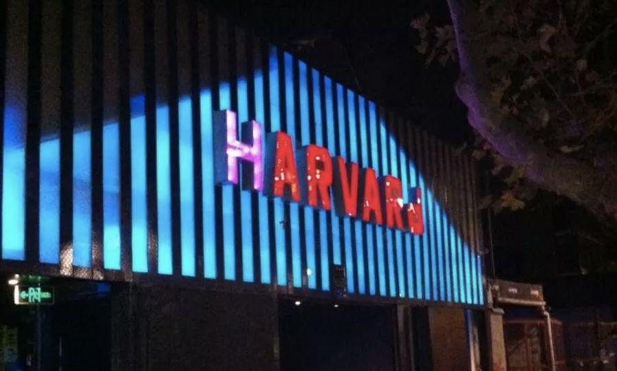 Espacio Harvard: crónicas de supervivencia a la universidad etílica