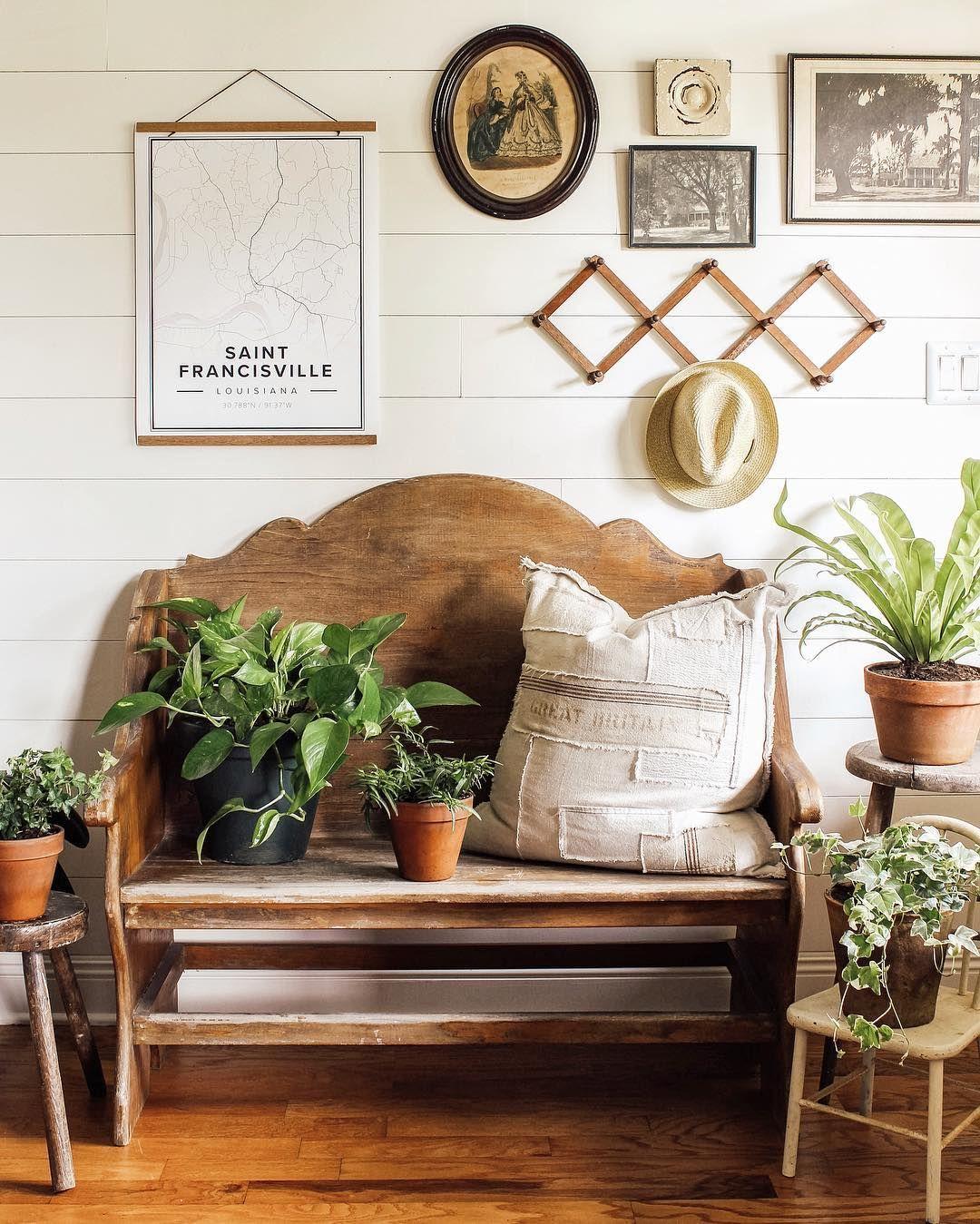 "Nursery Indoor Plants Near Me: Heather Olinde On Instagram: ""Just Call Me The Plant Lady"