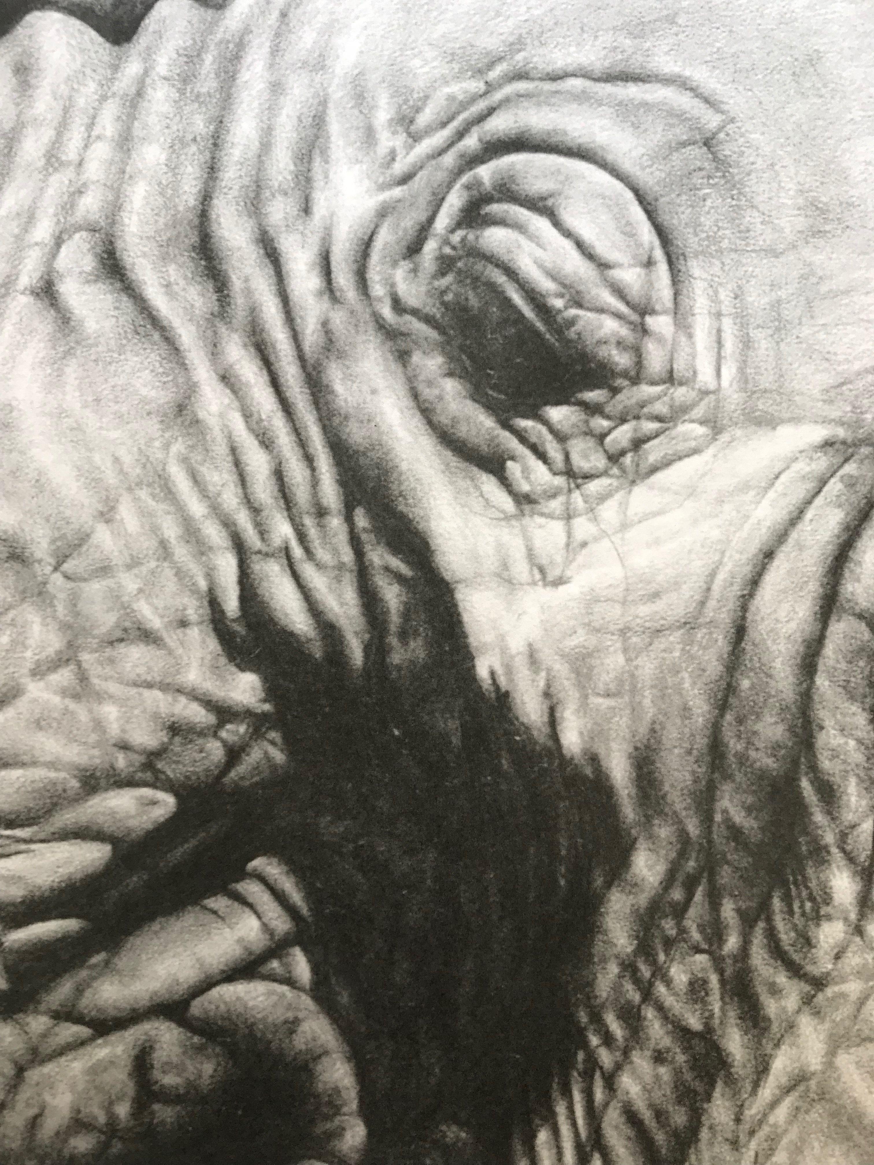 da81706b5e3d Detail of elephant
