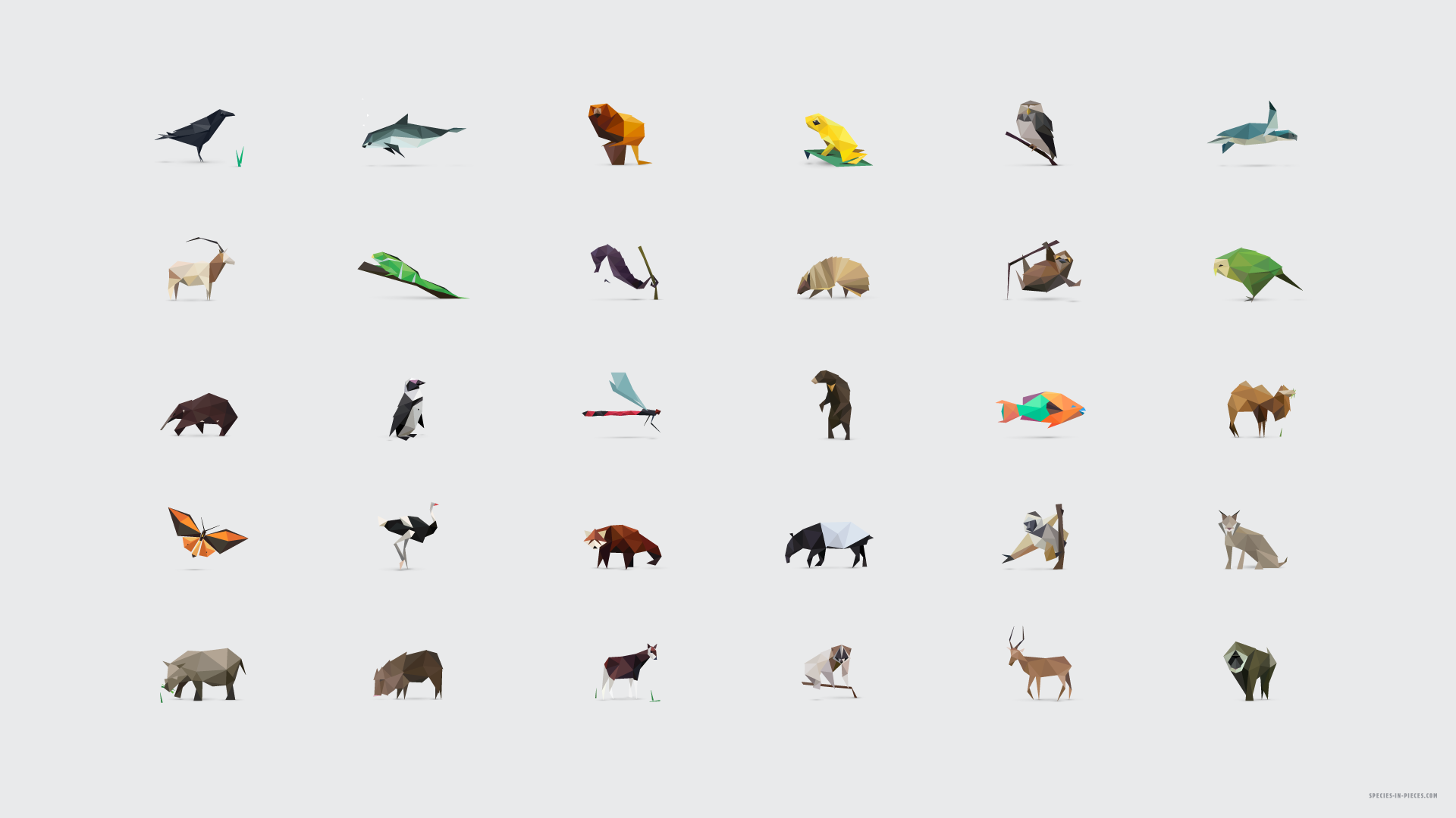 30 Species 30 Pieces 1 Fragmented Survival A Css Based