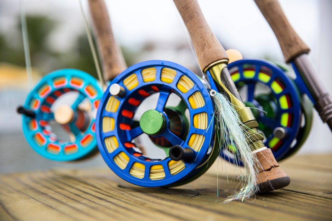 Bright futures color and fishing gear fly fishing fish