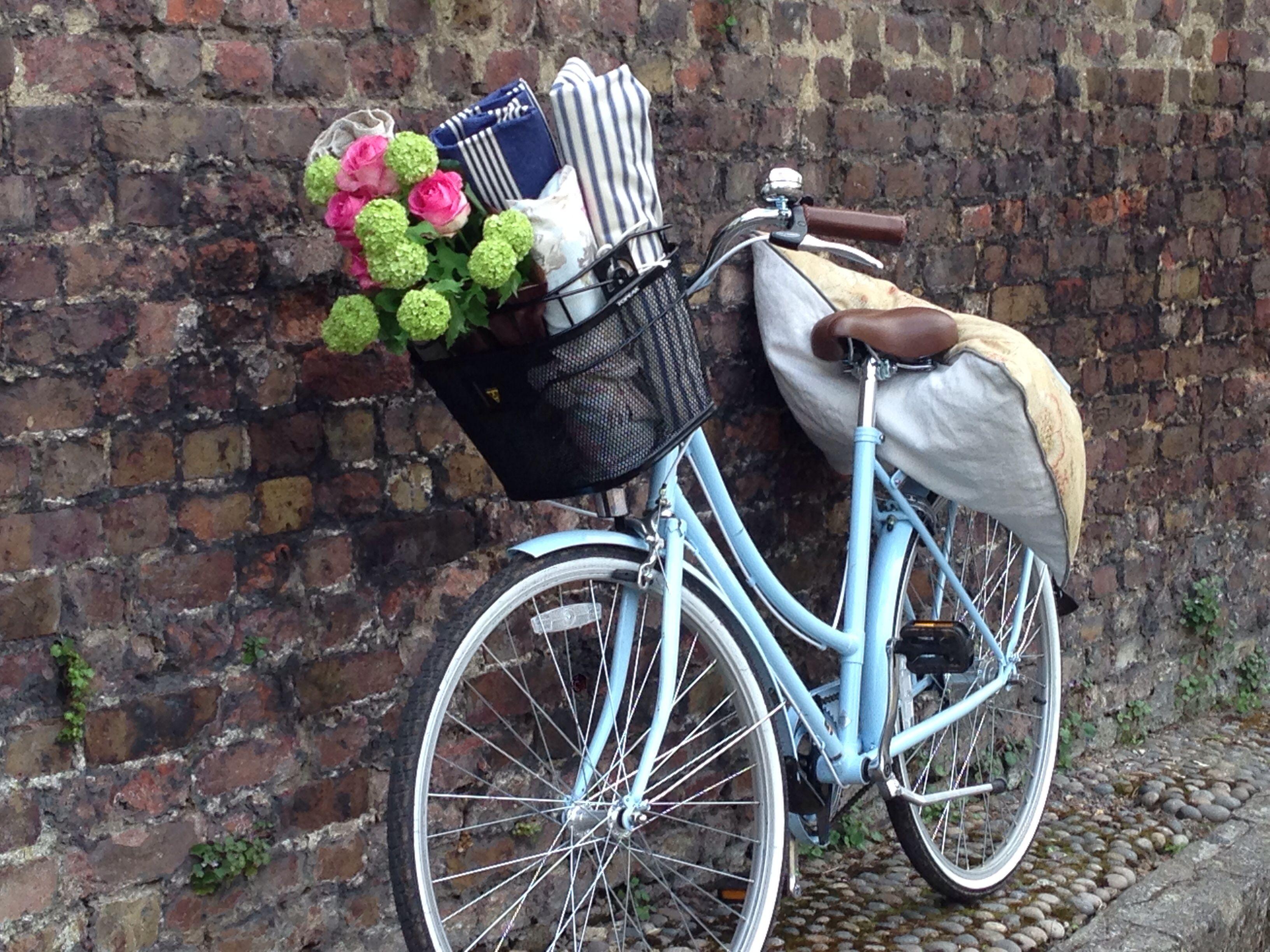 Bicycle hainteriordesign