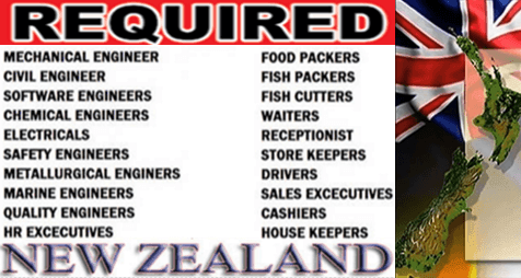 Multiple Jobs And Occupations In New Zealand Multinational