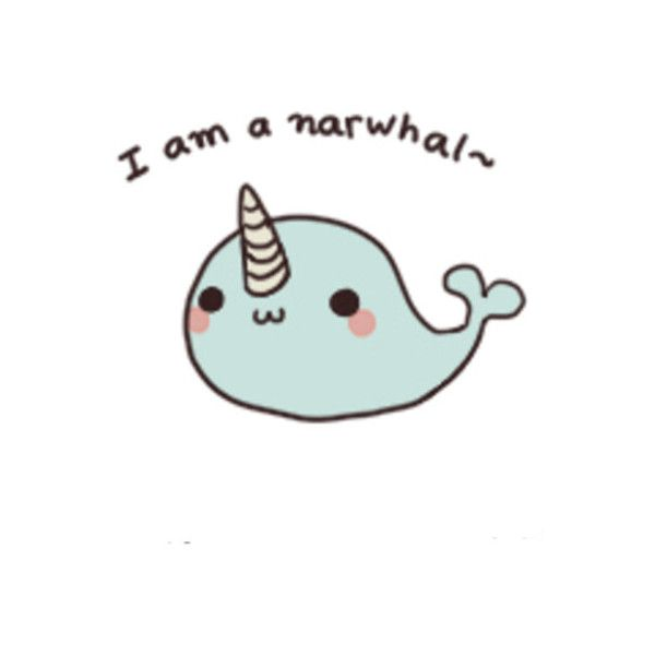 Narwhal liked on polyvore featuring fillers quotes - Cute narwhal wallpaper ...