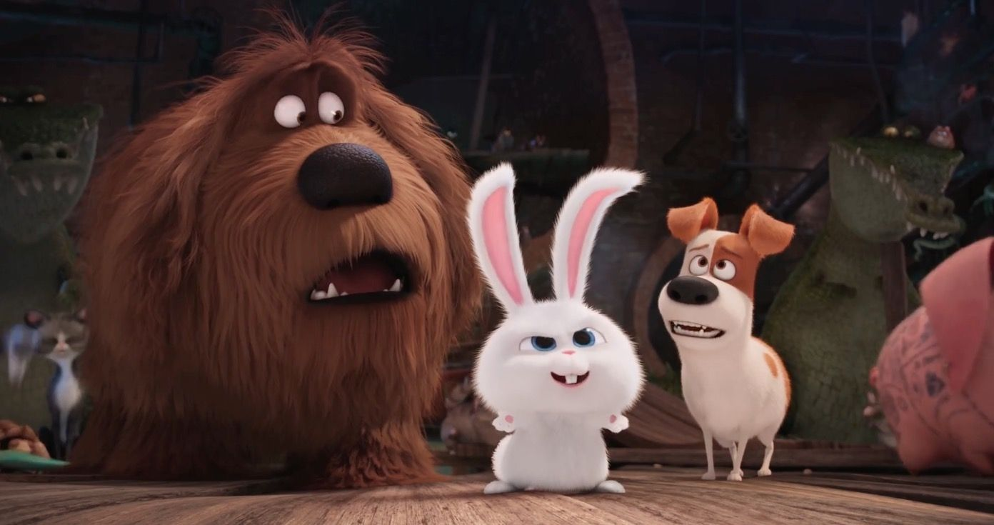 Screened Out The Secret Life Of Pets Secret Life Of Pets Cool Pets Pets Movie