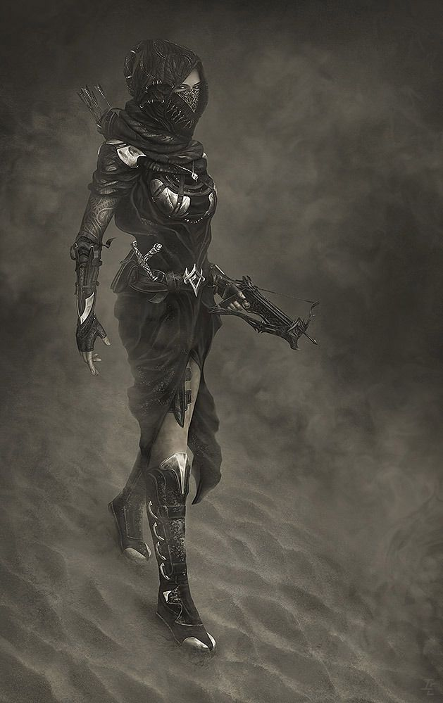 Desert Storm Picture  (2d, fantasy, character, desert, storm, assassin, girl, woman, crossbow)