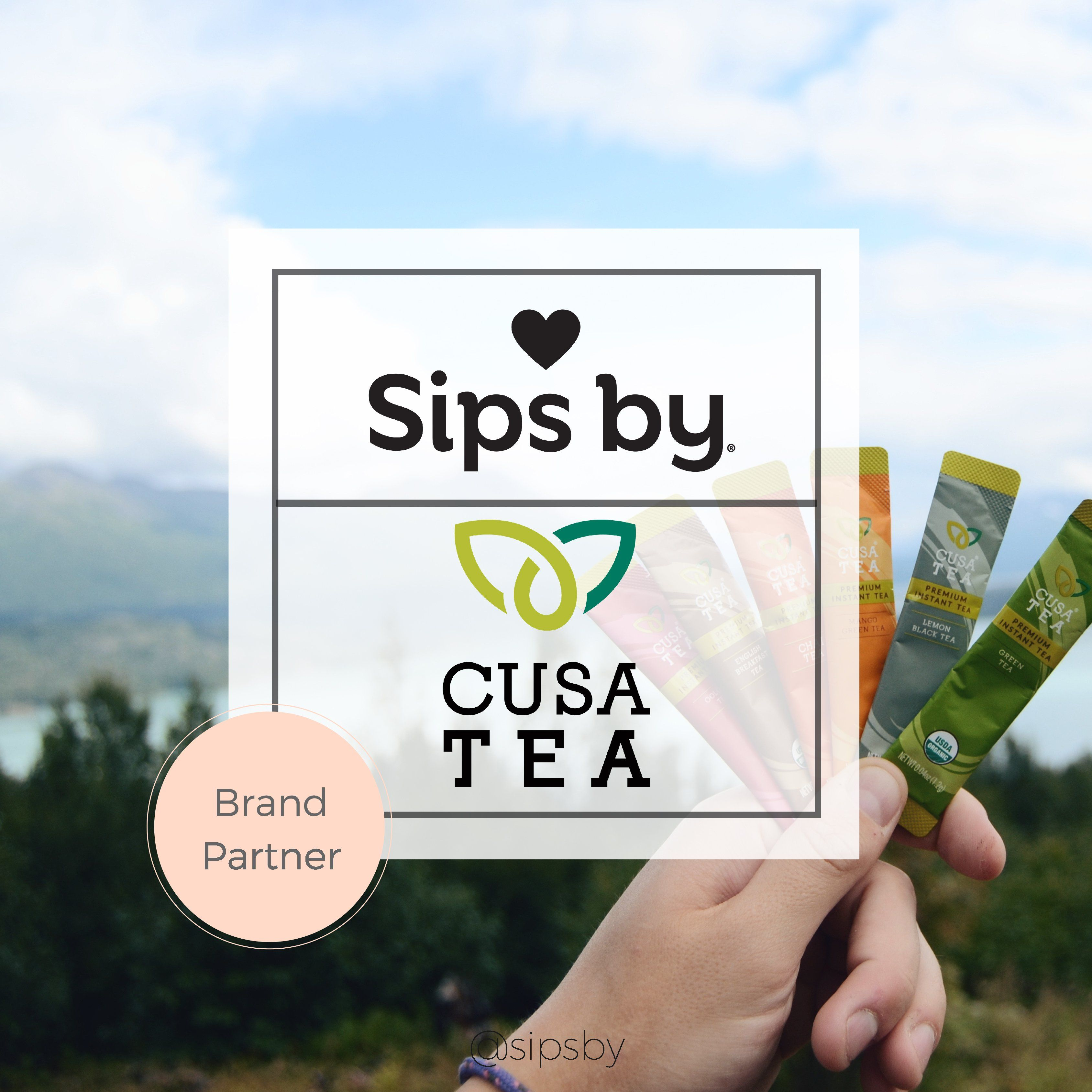 Best Tea Subscription Box With Personalized Teas From 150 Tea