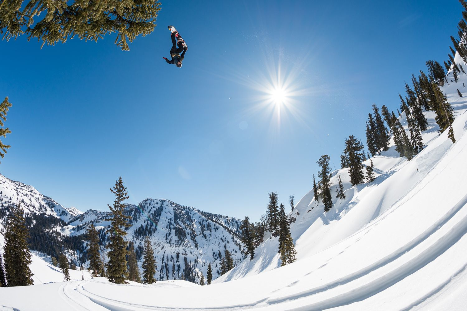 The Travis Rice Pro Snowboard and the Snowboards of The