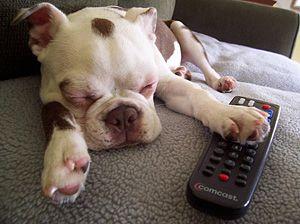 I got the remote