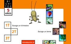 Juegos Educativos Infantil 5 Anos Bichitos Ordinador Pdi Pinterest