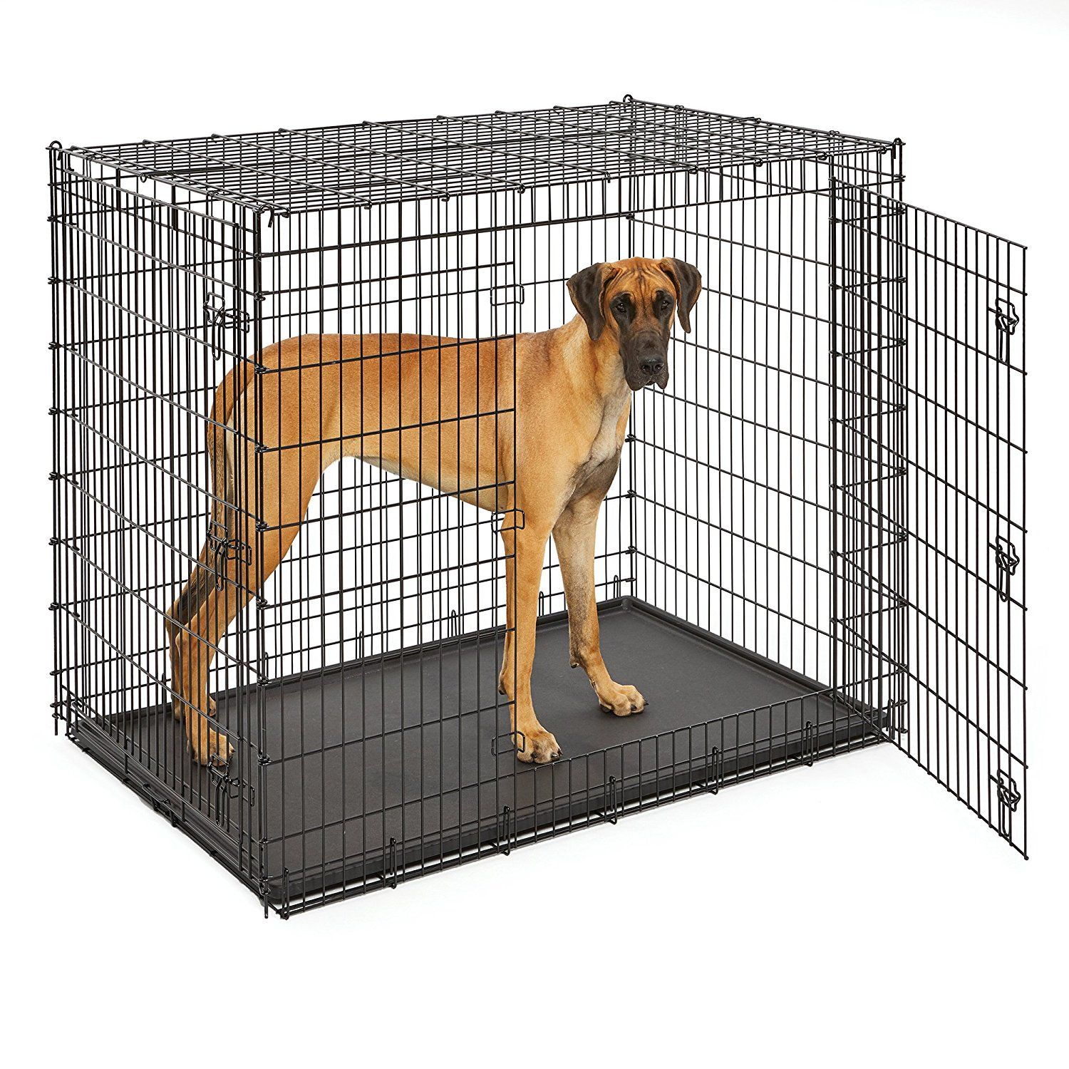 Amazon Com Midwest Homes For Pets Xxl Giant Dog Crate 54 Inch