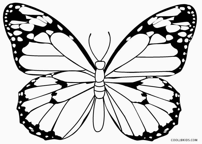 48 Beautiful Butterfly Coloring Pages Dibus 1 Butterfly