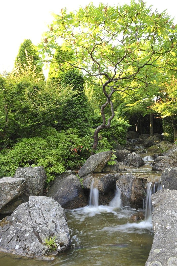 Feng Shui Bilder feng shui bild wasser wasser ist die lebensenergie falls