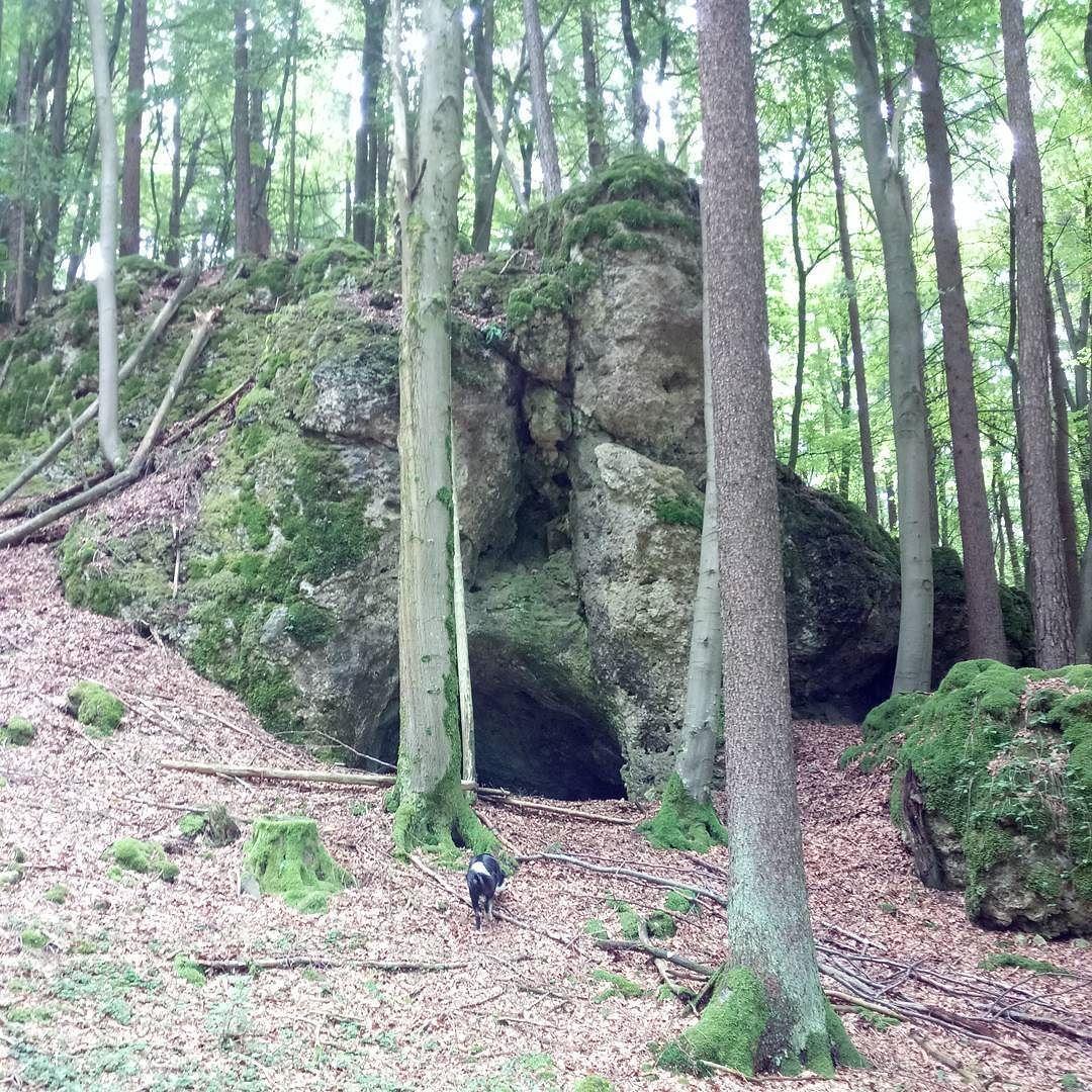 Höhle mit frühlatènezeitlichen Funden. Standort: geo:49.66924311.417562?z=18 http://osmand.net/go?lat=49.669243&lon=11.417562&z=18 - https://www.instagram.com/artpla_net/
