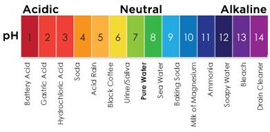 What Is Ph  Ph Chart  Ph Of Water  Brainworks