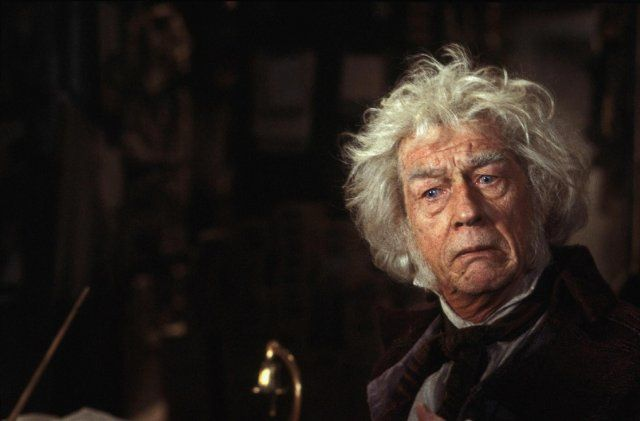 Harry Potter And The Sorcerer S Stone 2001 Harry Potter Characters Harry Potter Garrick Ollivander