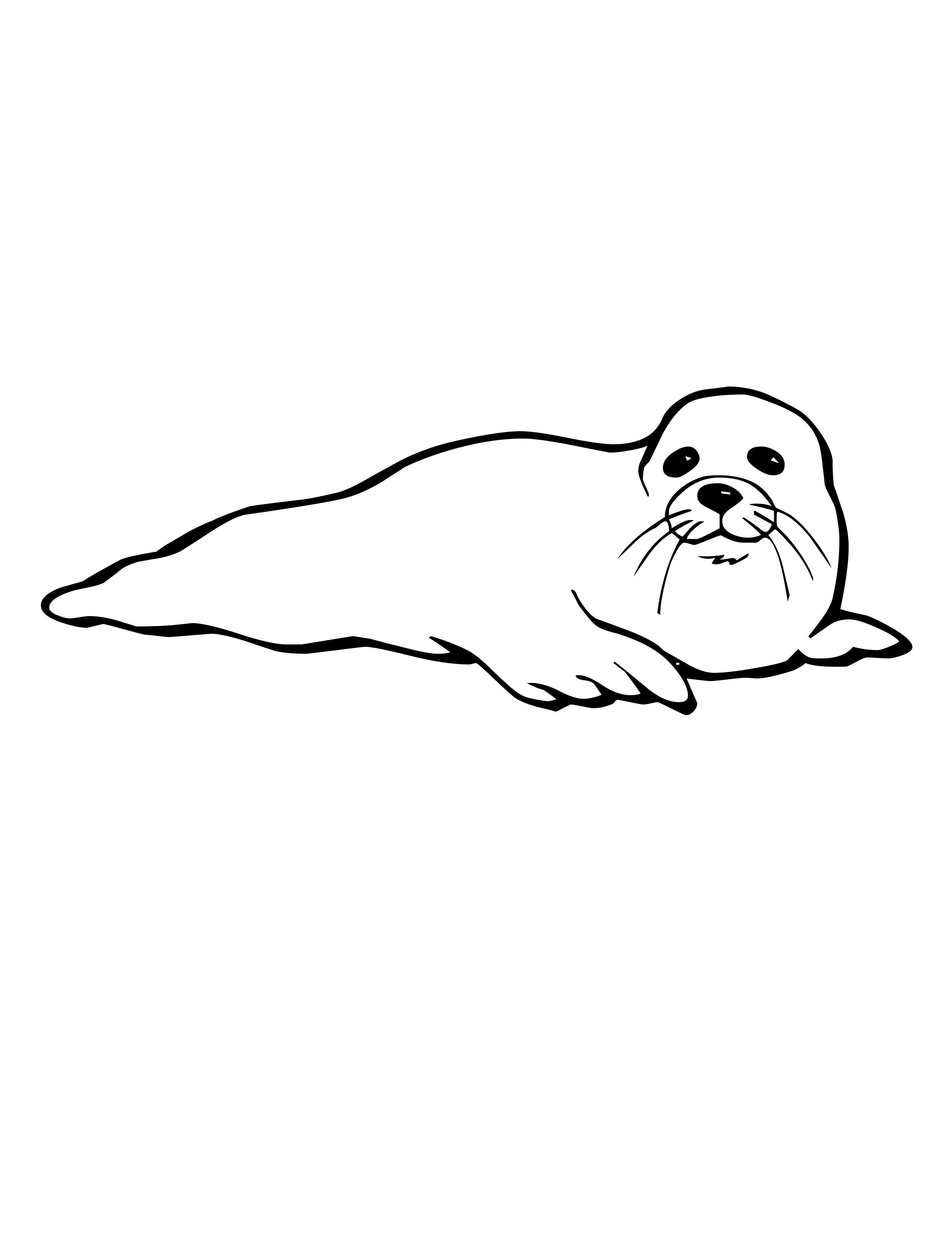 Cool Baby Seal Coloring Pages Special Picture