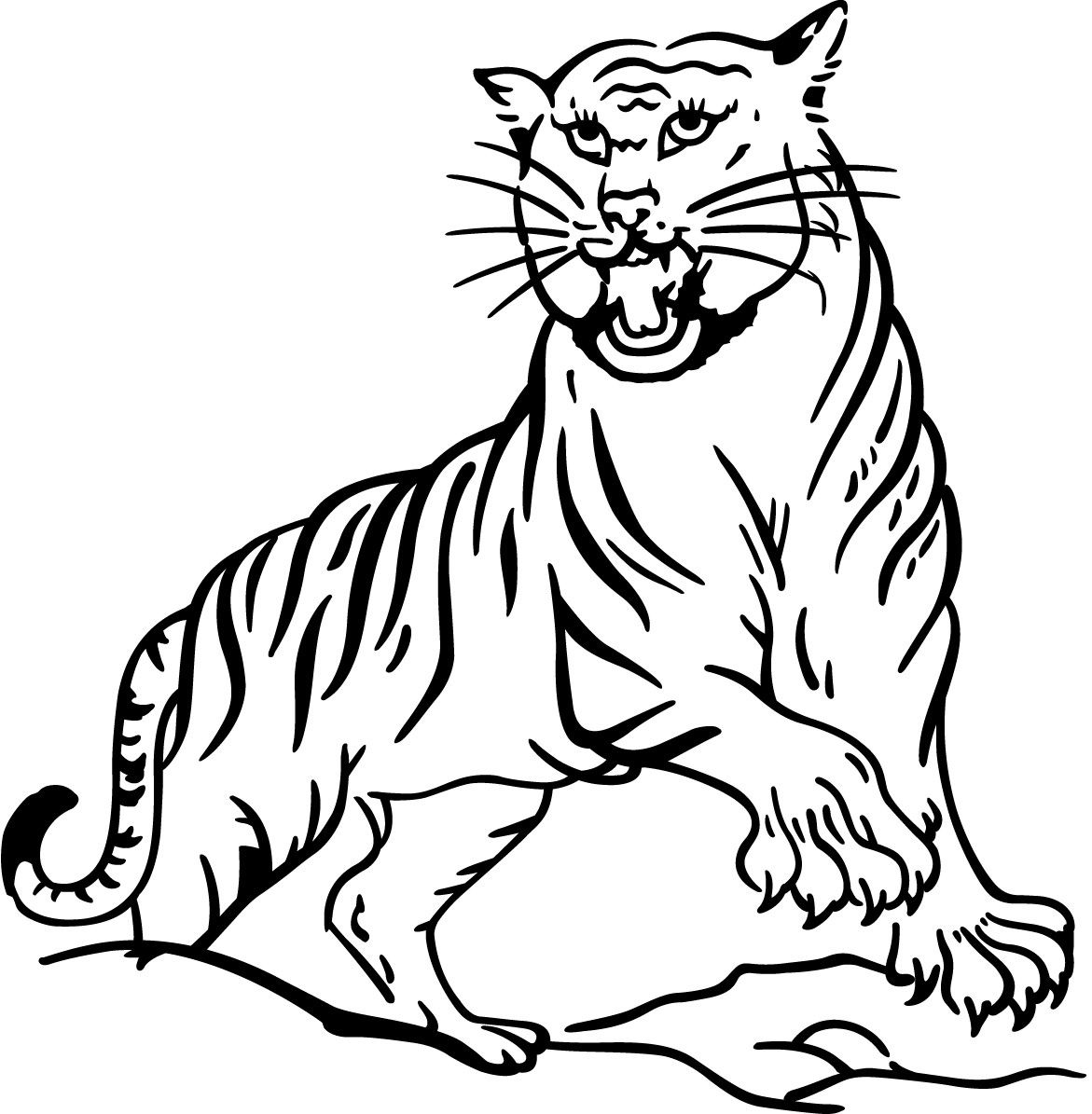 Coloring Page White Tiger Baby Saber Tooth Free Pages Daniel
