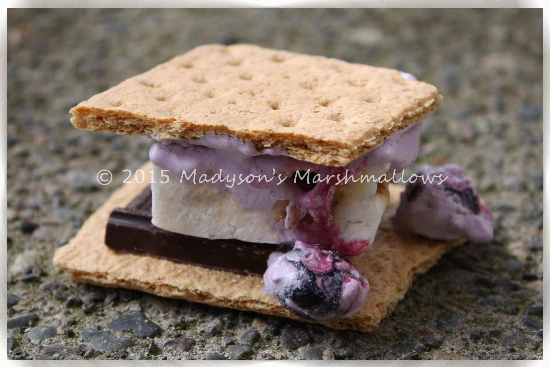 Cool Whip® & Blueberry S'more - creative s'mores by Madyson's Marshmallows