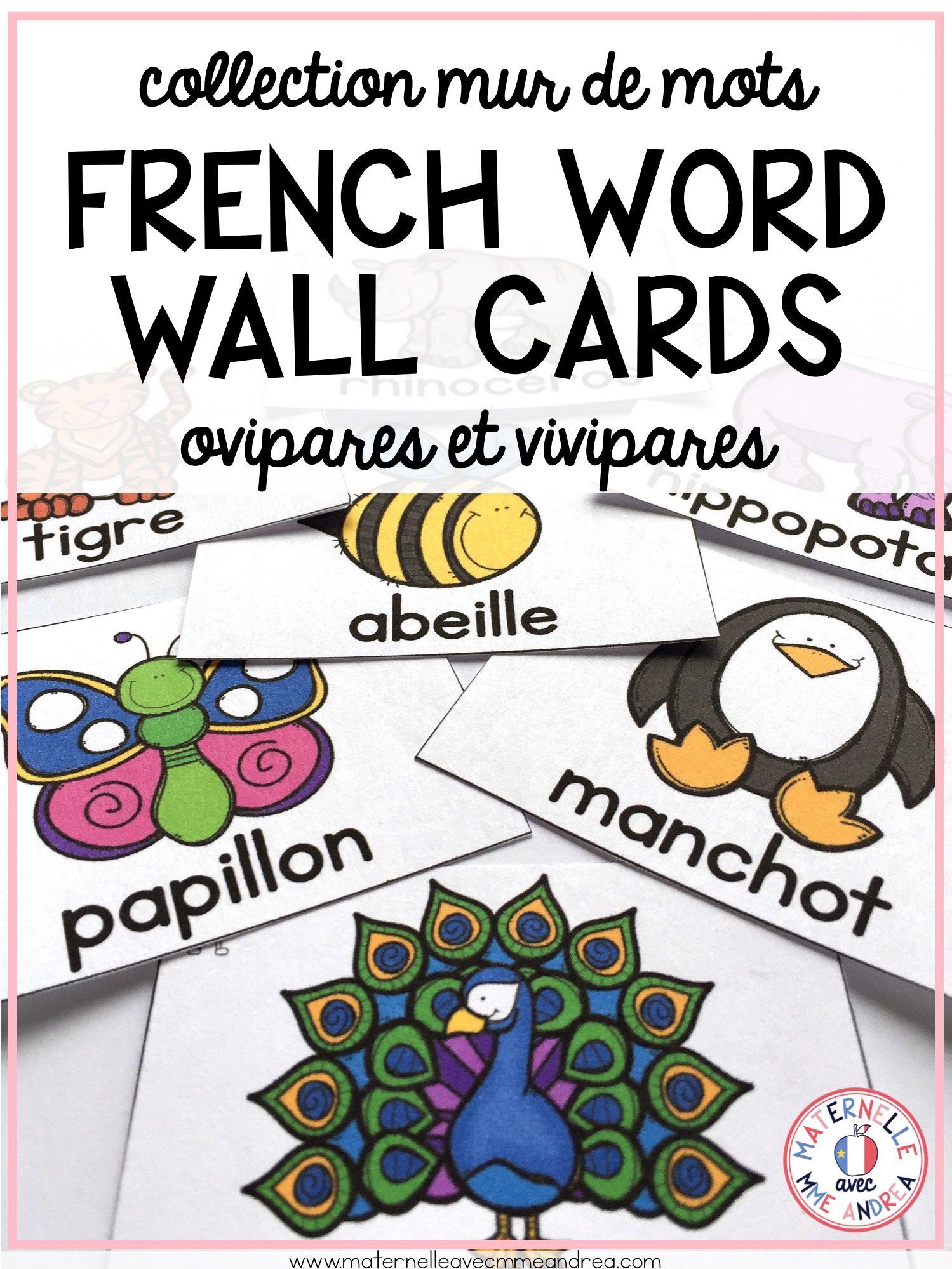 French Vocabulary Cards Cartes De Vocabulaire