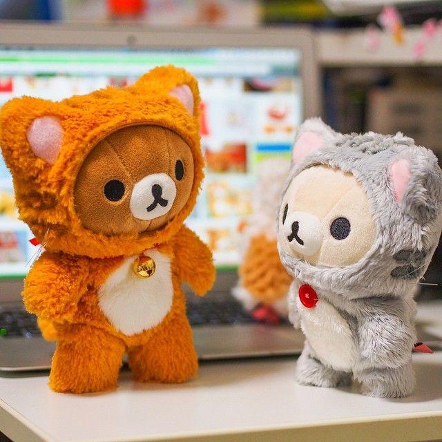 Rilakkuma <3 Korilakkuma #Neko chan ❤ Blippo.com Kawaii Shop ❤