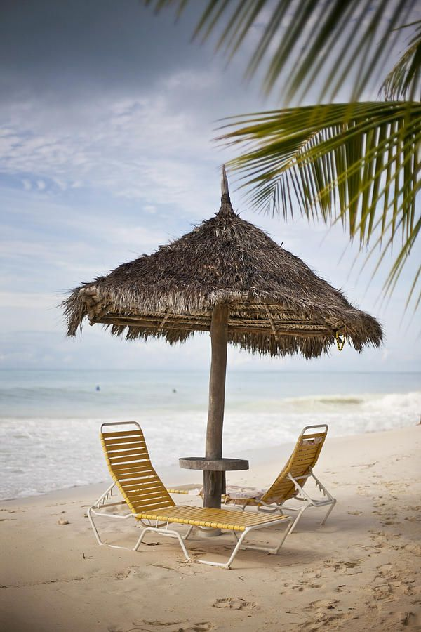 Beach Chairs and Umbrella -  Aruba | You Only Live Once - Discover Aruba!