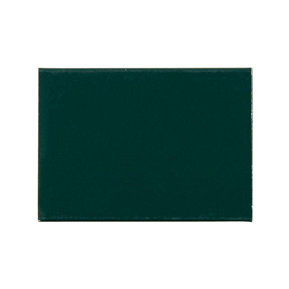 Andersen Storm Door Color Sample Forest Green Andersen Storm