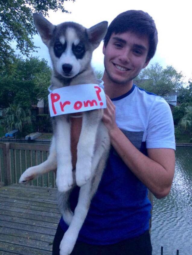 Dog Promposal Goalz In 2019 Prom Proposal Cute Prom Proposals