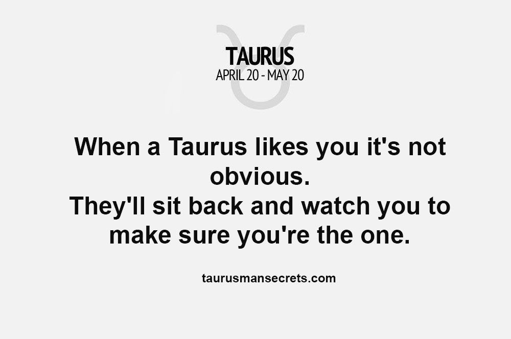 Signs a taurus man is interested in you