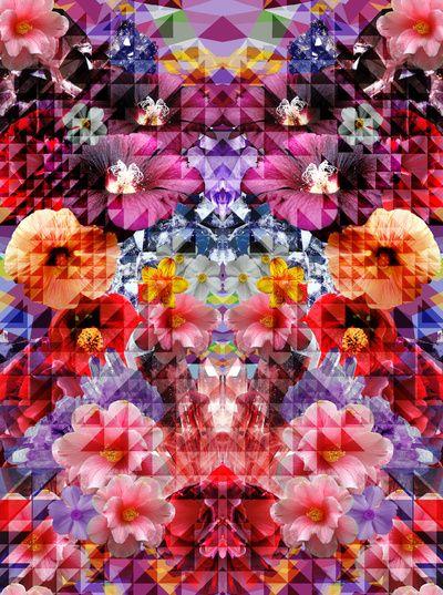 Flowers and Crystals Detall de la geometria