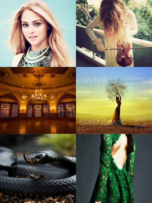 Daphne Greengrass The Girl Who Froze The Girl Who Harry Potter Characters Wizarding World