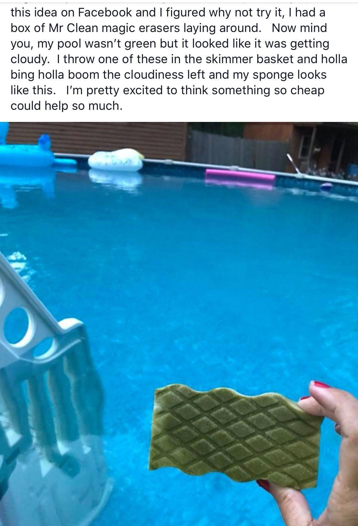 Clean A Pool With A Mr Clean Magic Eraser Arka Bahce Havuzlari Arka Bahce Havuzu Peyzaji Yuzme Havuzlari