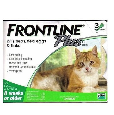 Anti Flea Tick 1 Box 3 Doses Portable Frontline For Cats 8 Weeks Or Older Frontline Plus For Cats Cat Fleas Flea Prevention For Cats