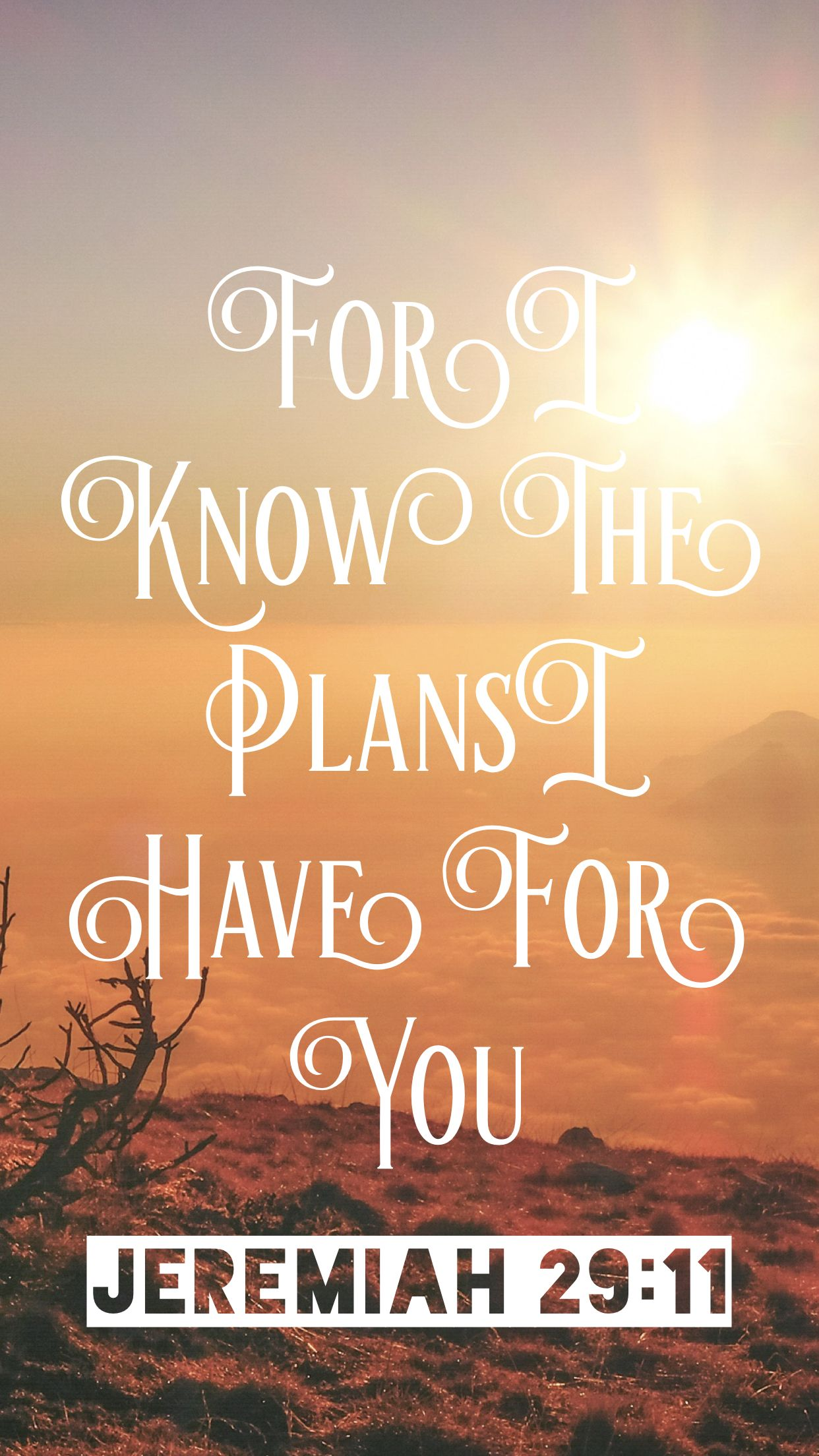 Inspirational Quotes On Life Challenges Wallpapers Phone Wallpaper Jeremiah 29 11 Well Versed