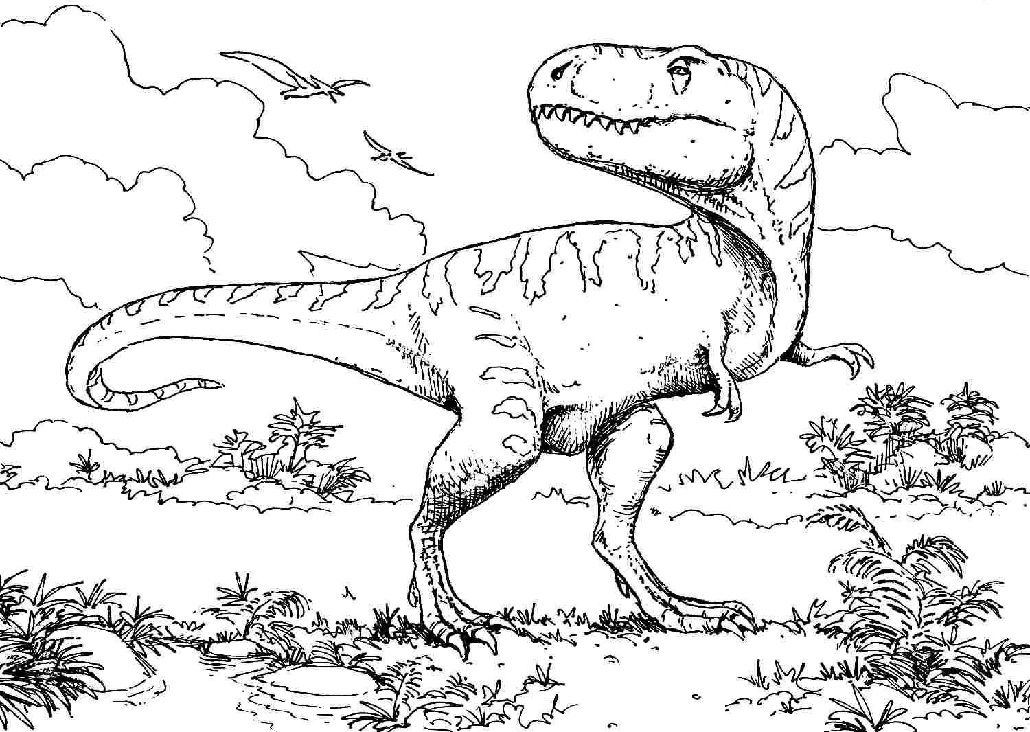 Dinosaurier Rex Ausmalbilder : Coloring Pages Animal Dinosaurs Tyrannosaurus Rex Printable Free For