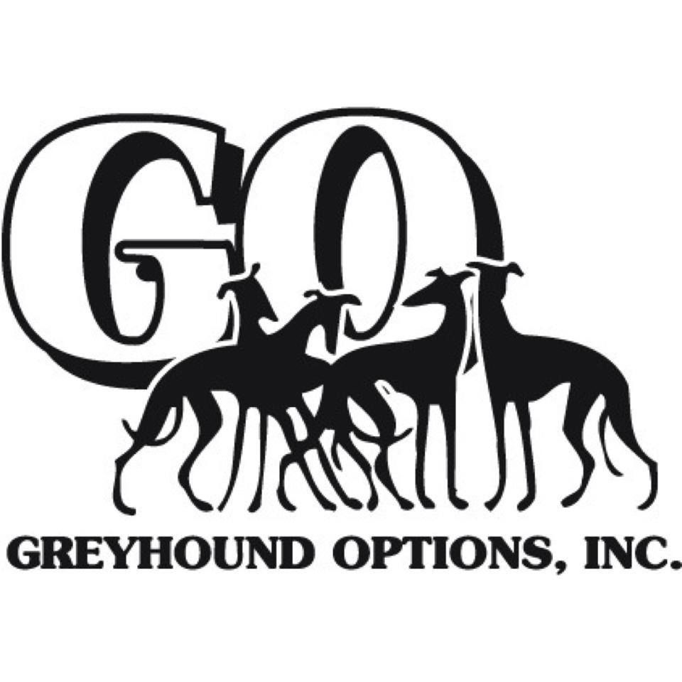 Greyhound Options Is The Local Adoption Group That Both Maria And Kate Adopted Their Greyhounds From We Don With Images Greyhound Greyhounds Racing Volunteer