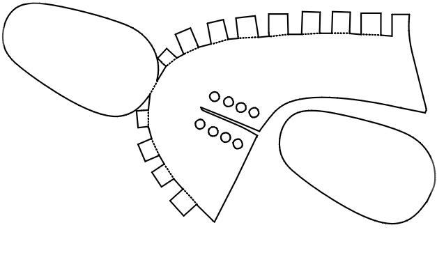 Шаблоны пинеток для распечатки