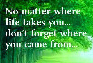 Never Forget Your Roots Quotes And Sayings Quotes Today Quotes