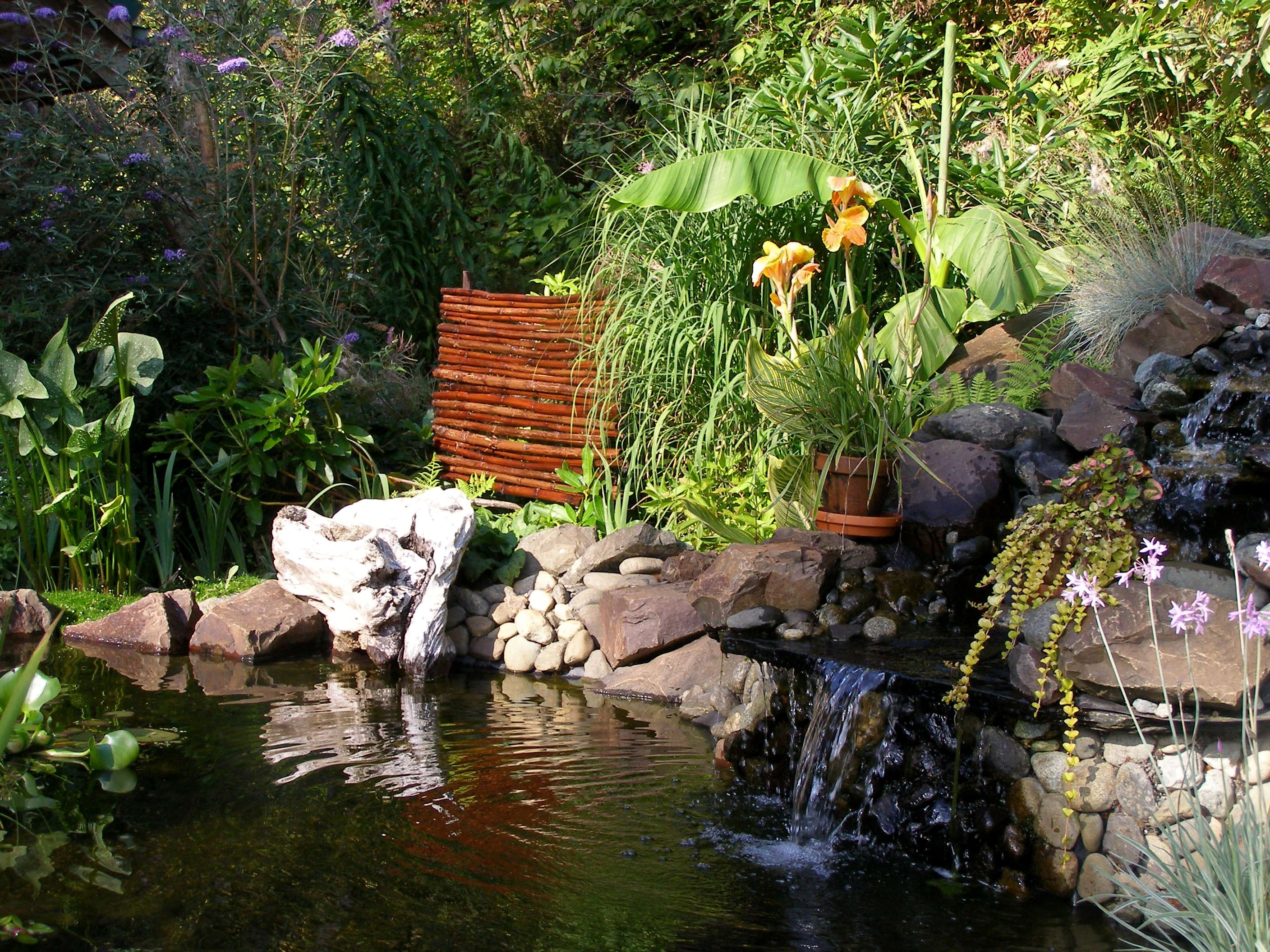 Backyard Landscaping Ideas For A Gorgeous Retreat Waterfalls