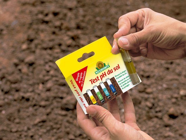 Qu Est Ce Qu Un Sol Acide Comment Augmenter Son Ph Quelles Plantes Y Cultiver Jardinage Biologique Sol Les 10 Commandements