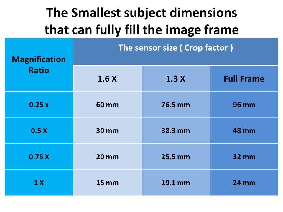 The macro lenses explained samples