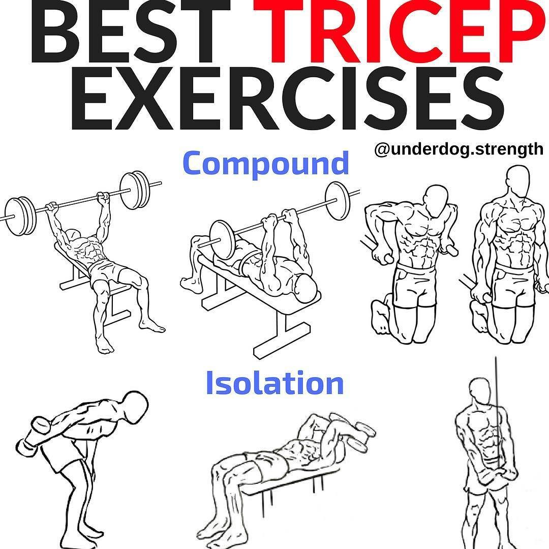 Pin On Tricep