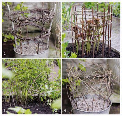 植物の支柱などを自然素材でつくる 植物 ガーデニング 庭