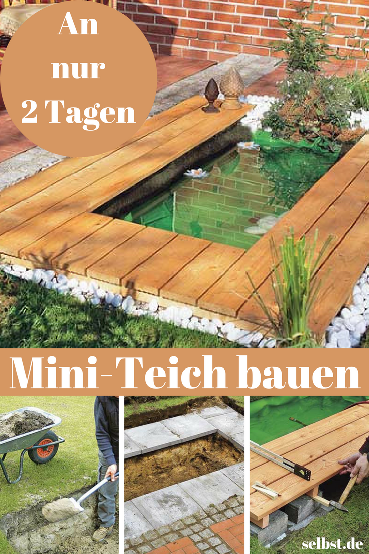 Mini-Teich #kleinegärten