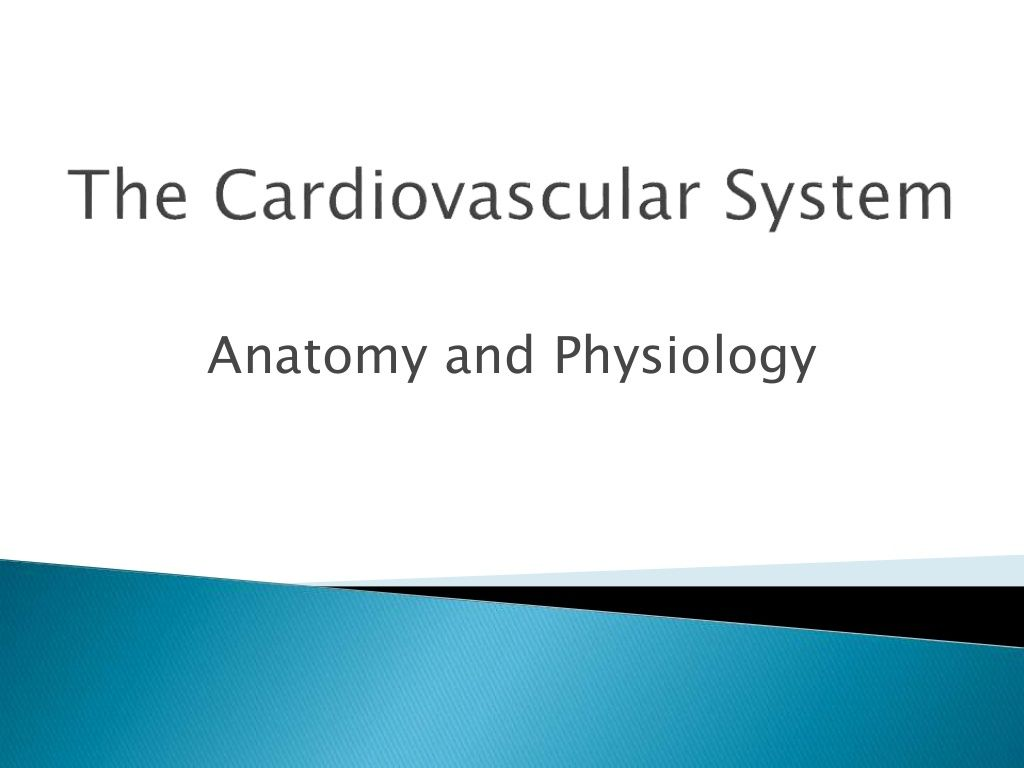 Power point the cardiovascular system - anatomy and physiology by ...