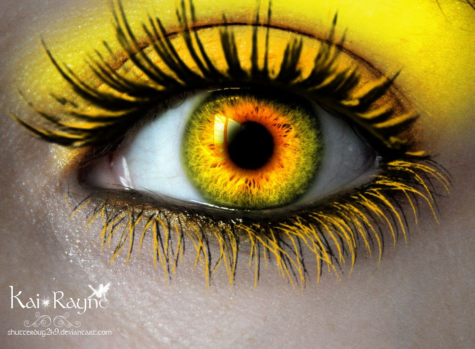 yellow eyes - photo #1